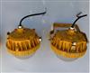 防爆吸壁式LED灯50W配套90min蓄电池