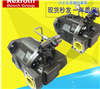 A10VSO型REXROTH柱塞泵液压公司