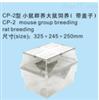 TK-CP-2小鼠群养大鼠饲养(带盖子)