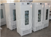 SPX-250-II智能生化培養箱