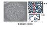 岛津 MonoCap系列整体型毛细管HPLC 色谱柱