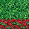 2米---12米 1米---400米绿色聚乙烯双模防寒布