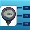 DPI104DPI104 数字压力表